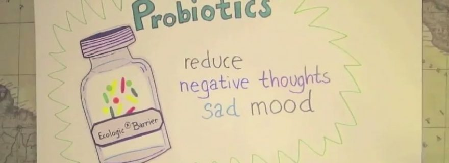 Less focused on recurrent bad feelings through probiotics